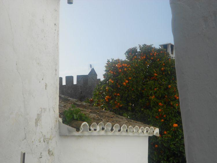 Inuti slottet Castellar de la Frontera F01. välsignelse ceremoni engelska spanska franska